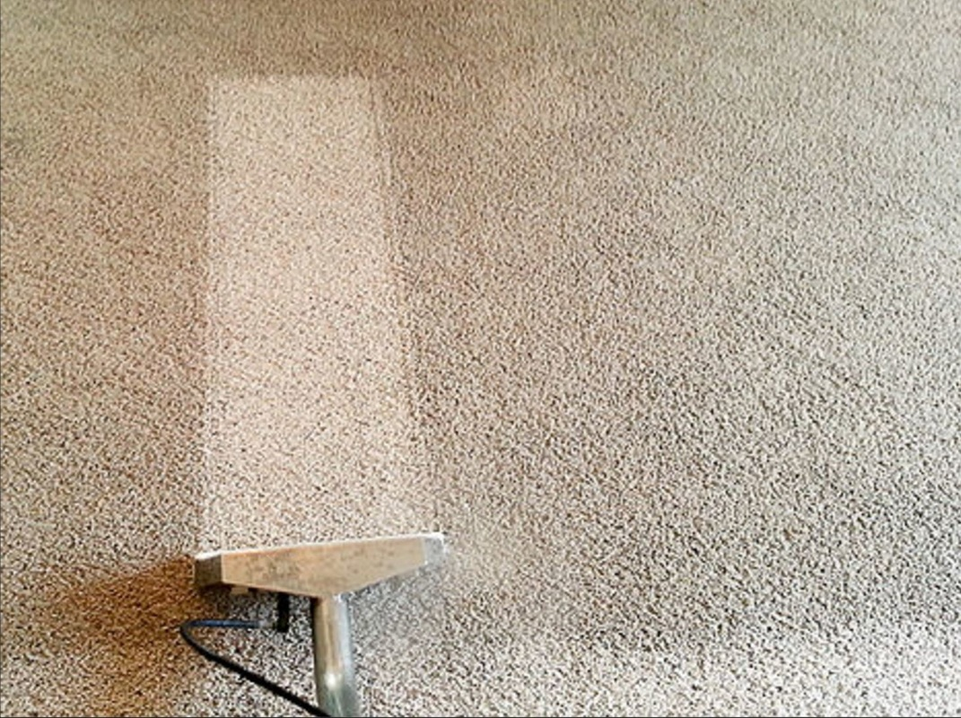 Carpet Cleaning Service Franklin TN