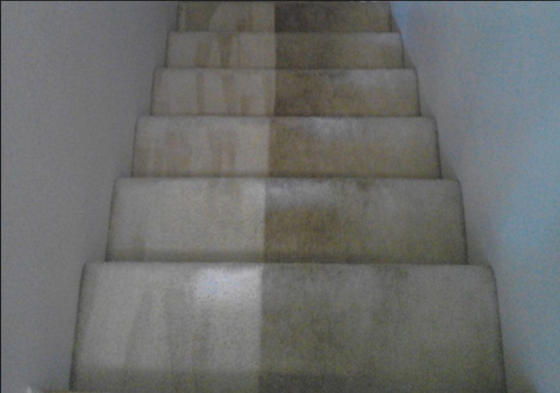 Carpet Cleaning Services Carpet Cleaner Franklin
